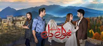 Bhool Jaa Ay Dil Episode 90
